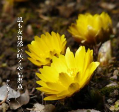 Photo_20200128095101