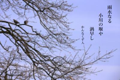 Photo_20200212142601