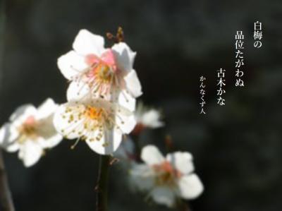 Photo_20200220130201