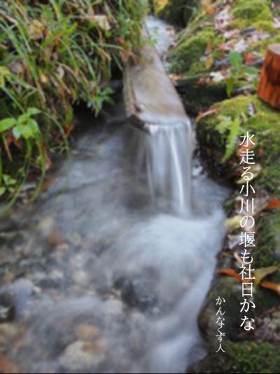 Photo_20200312120101