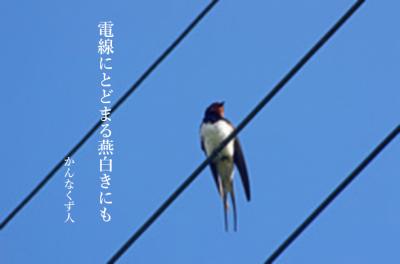 Photo_20200320100401