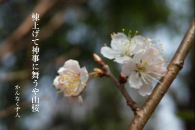Photo_20200328090801