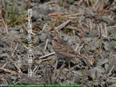 Photo_20200407143101