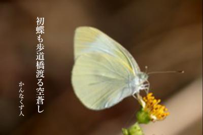 Photo_20200410114601