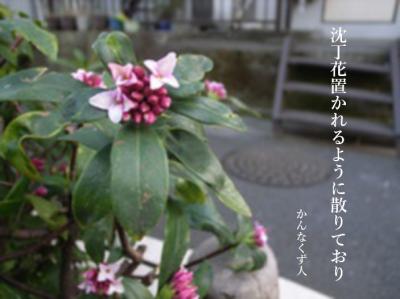 Photo_20200418085201