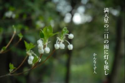 Photo_20200418101201