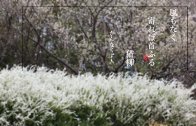 Photo_20200418115801