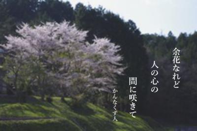 Photo_20200425130701