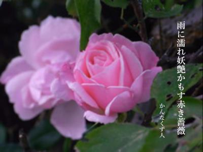 Photo_20200425140801