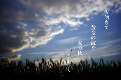 Photo_20200503120301
