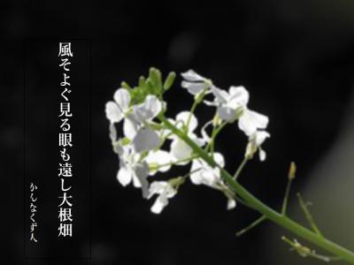 Photo_20200503145401
