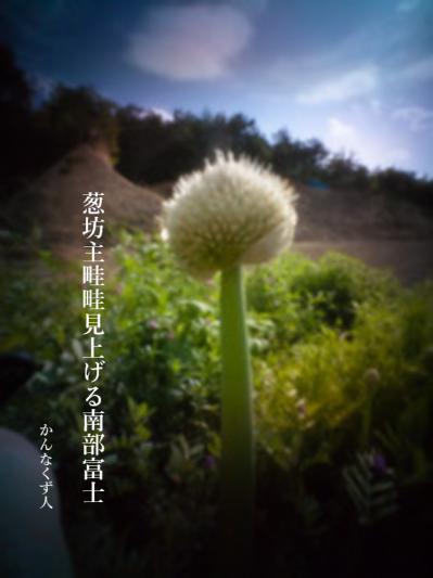 Photo_20200503154401
