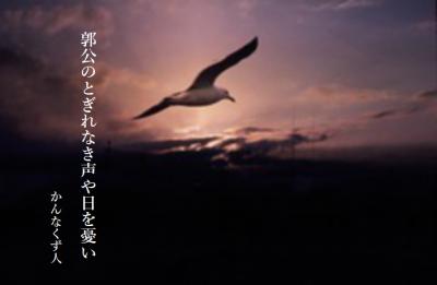 Photo_20200514133101