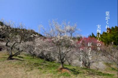 Photo_20200518103201