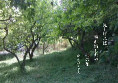 Photo_20200528115201