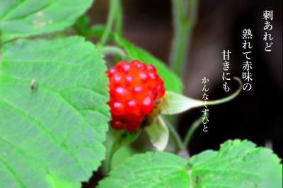 Photo_20200605092501