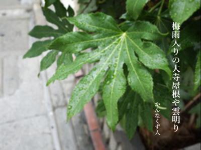Photo_20200605104901