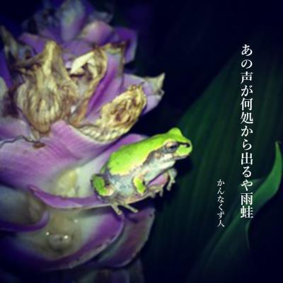 Photo_20200605115201