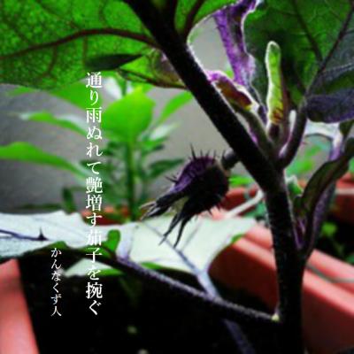 Photo_20200621162201