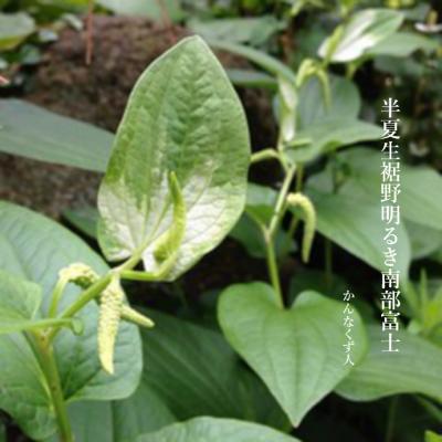 Photo_20200627110001
