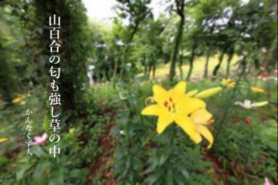 Photo_20200719141901