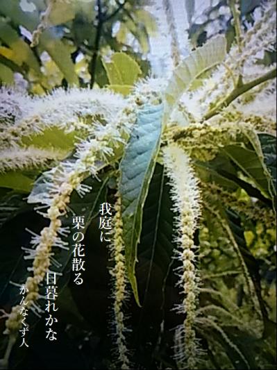 Photo_20200725094701