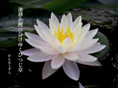 Photo_20200725102901