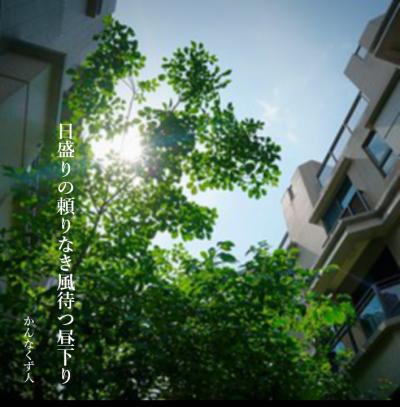 Photo_20200803151601