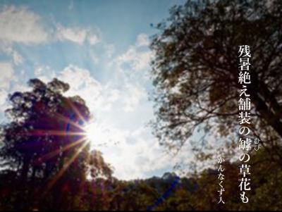 Photo_20200819111503