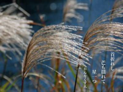 Photo_20201001084101