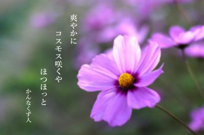 Photo_20201003092001