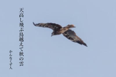 Photo_20201006103802