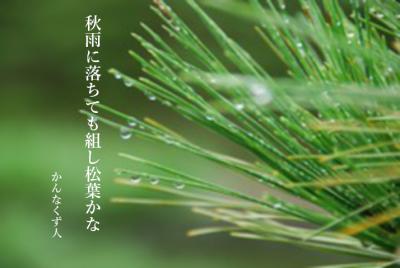 Photo_20201011104401