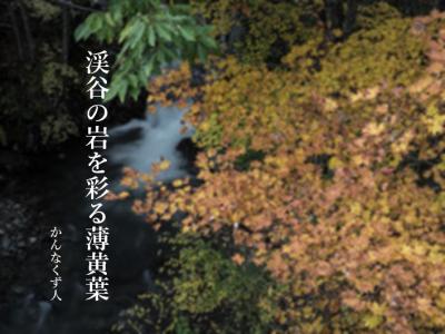 Photo_20201017095201