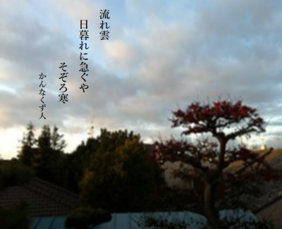 Photo_20201030104401
