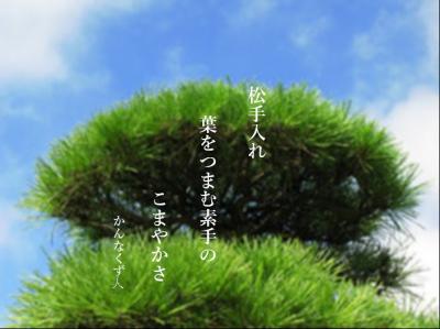 Photo_20201121091402